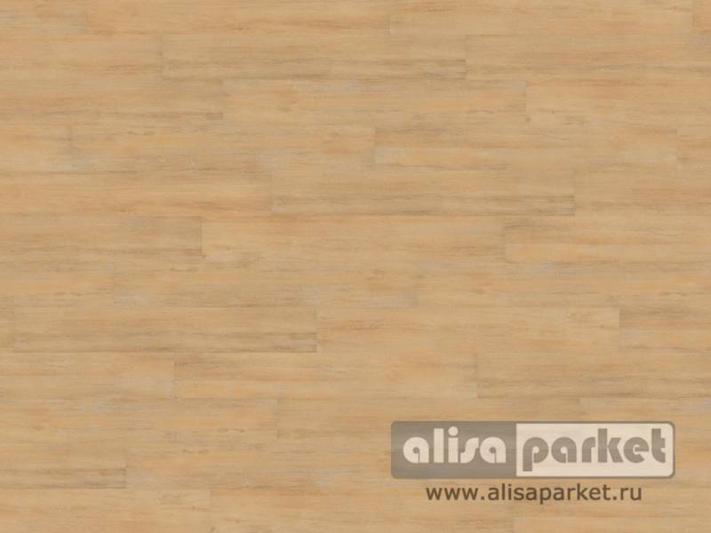 Фото виниловых полов Wineo Wineo 600 wood замковая Calm Oak Cream в интерьере
