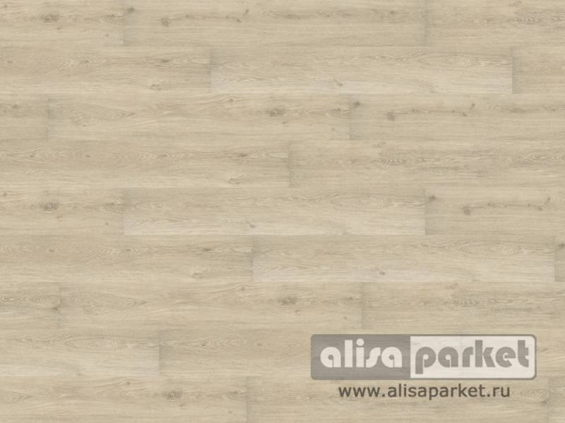 Фото Виниловые полы Wineo Wineo 600 wood XL замковая Victoria Oak White DLC00032